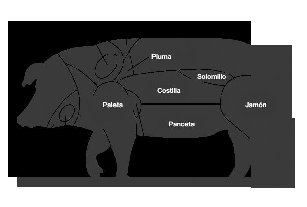 partes-cerdo